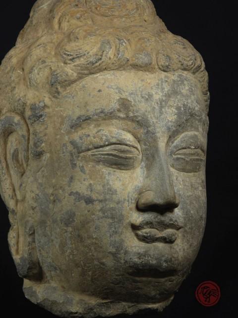 STONE HEAD OF BUDDHA (LONGMEN GROTTO STYLE)